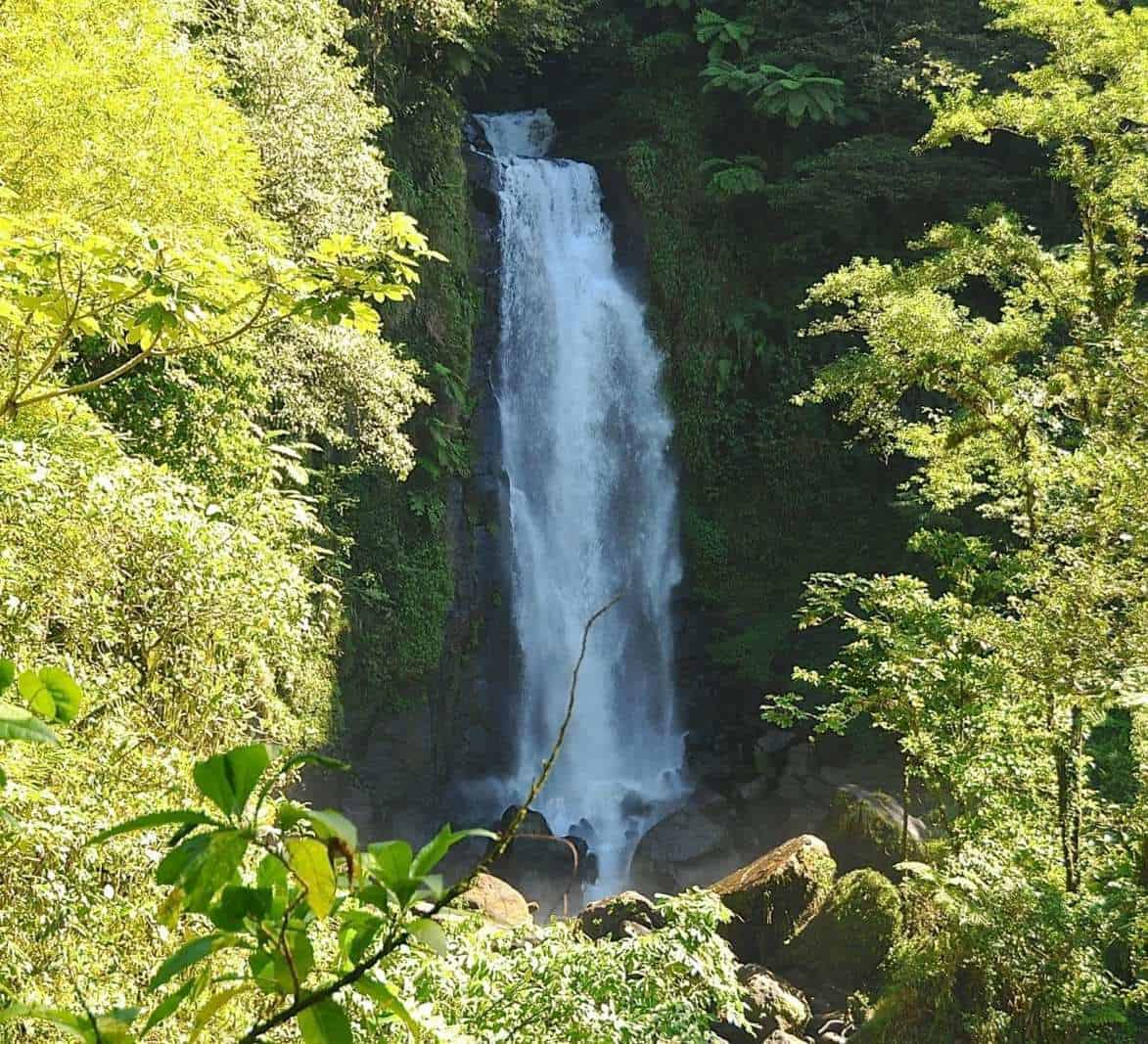 The first waterfall to view at Trafalgar Falls on your cruise to Dominica.